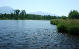 Gallery: Idaho s South Fork of the Snake River, Silver Creek and Frank Church Wilderness Area, USA 2008