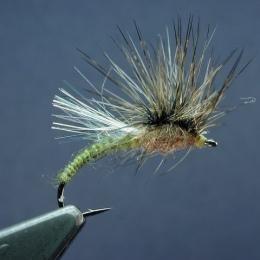Flies, Martin Westbeek, the Netherlands.