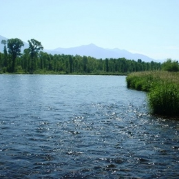 Idaho s South Fork of the Snake River, Silver Creek and Frank Church Wilderness Area, USA 2008