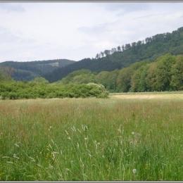 Wenne Duitsland 2011